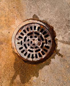 Floor Drains Abco Plumbing Northern